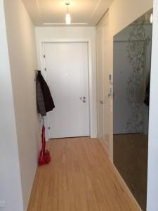 Wohnungs-Eingangstüre